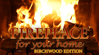 Fireplace 4K: Crackling Birchwood from Fireplace for Your Home